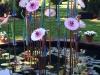 Flowers & Grasses